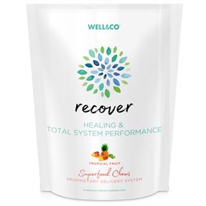 Picture of Recover 60 Superfood Chews